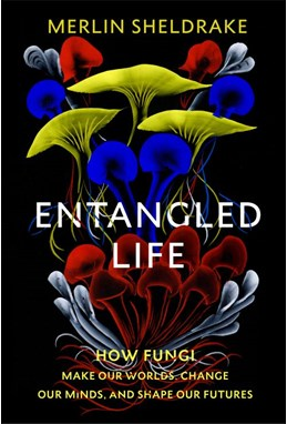 Entangled Life: How Fungi Make Our Worlds, Change Our Minds and Shape Our Futures (PB) - C-format