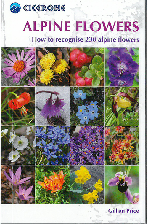 Alpine Flowers: How to recognise 230 alpine flowers